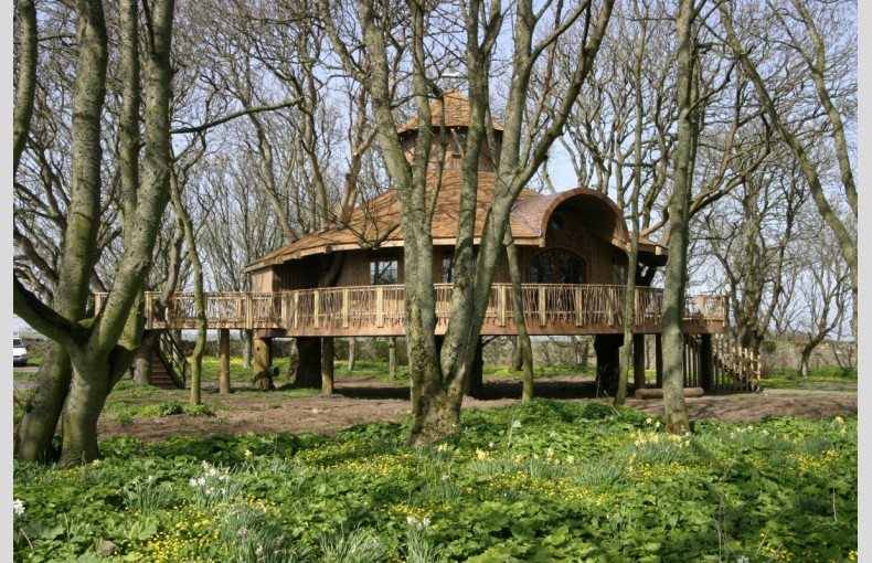The Treehouse at Ackergill Tower - Image 1