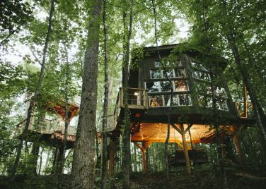 Bolt Farm Treehouse