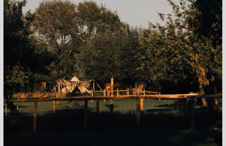 The Glamping Orchard - Image 7