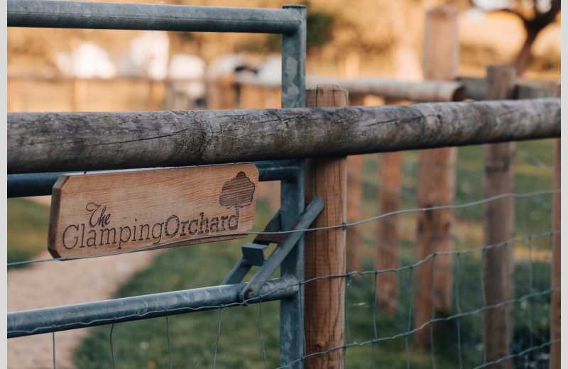 The Glamping Orchard - Image 15