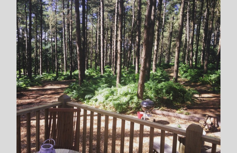 Happy Valley Glamping Retreat - Image 10