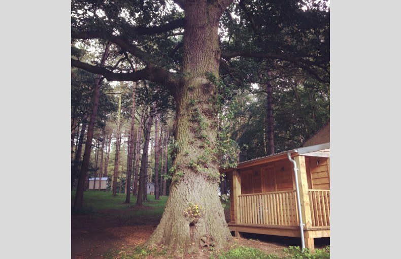 Happy Valley Glamping Retreat - Image 2