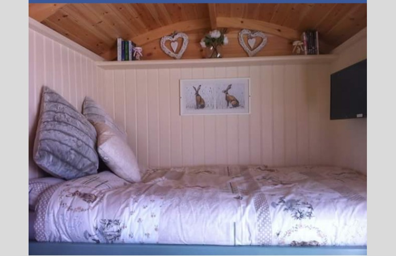Hollym Park Glamping - Image 10