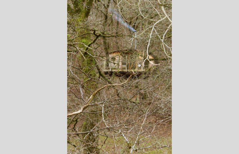 Living Room Treehouses - Image 14