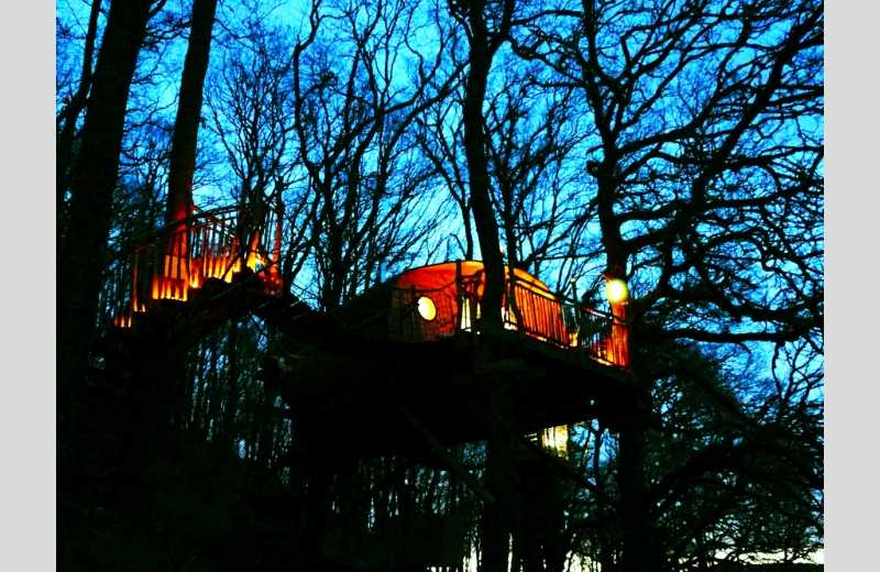 Living Room Treehouses - Image 5