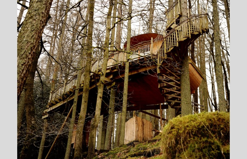 Living Room Treehouses - Image 7