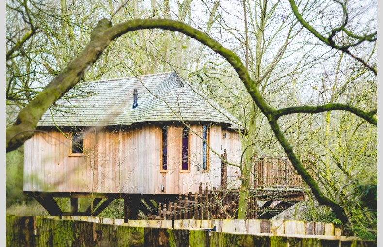 The Treehouse at Hothorpe Venues - Image 15