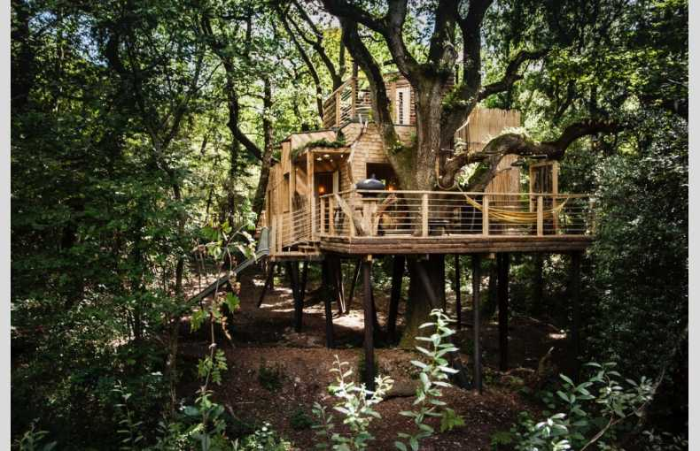 The Woodman's Treehouse - Image 21