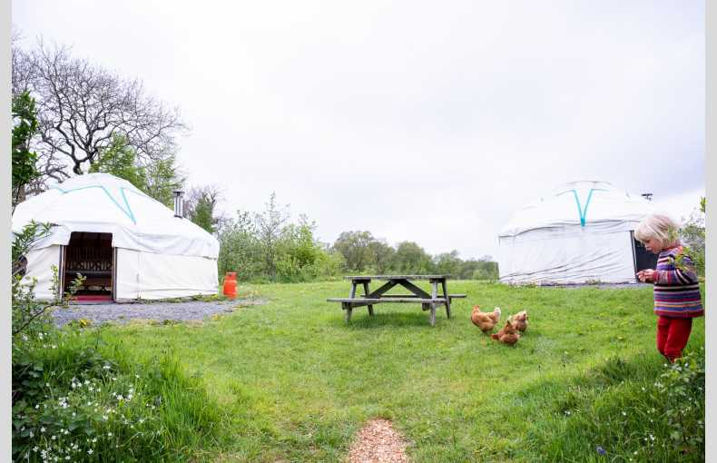The Yurt Farm - Image 5
