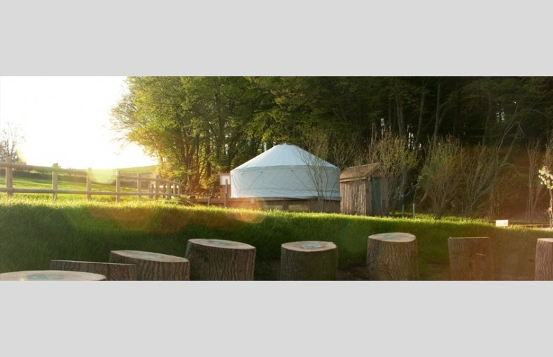 The Yurt Retreat - Image 13