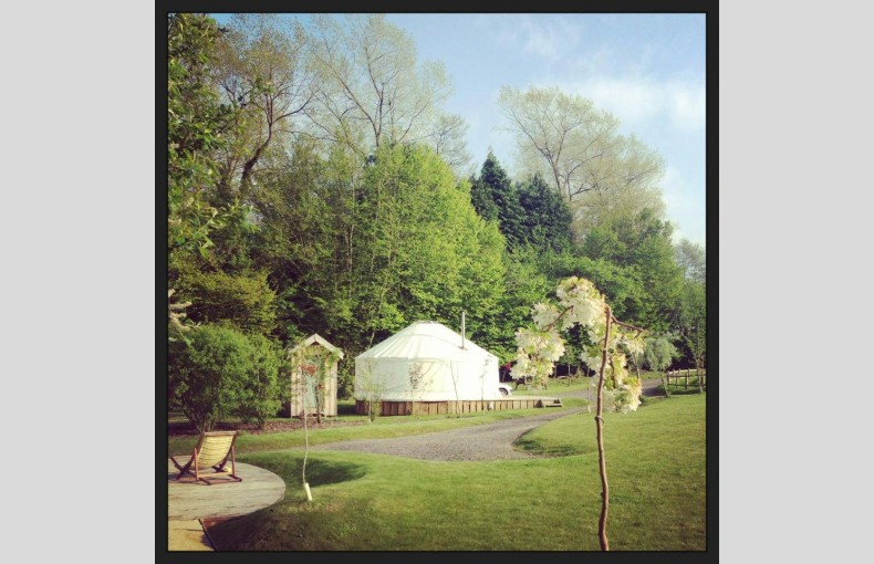 The Yurt Retreat - Image 17