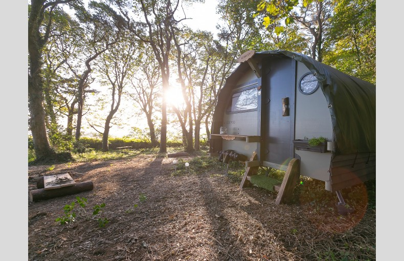 The Landpods at Wildflower Wood - Image 4