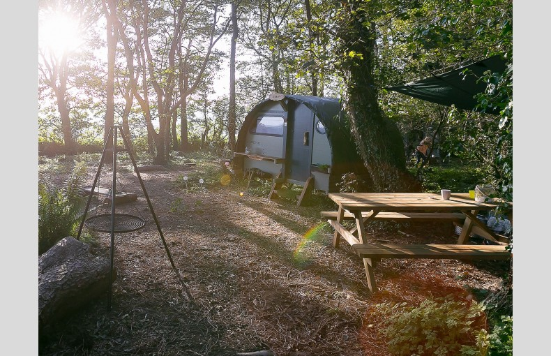 The Landpods at Wildflower Wood - Image 8