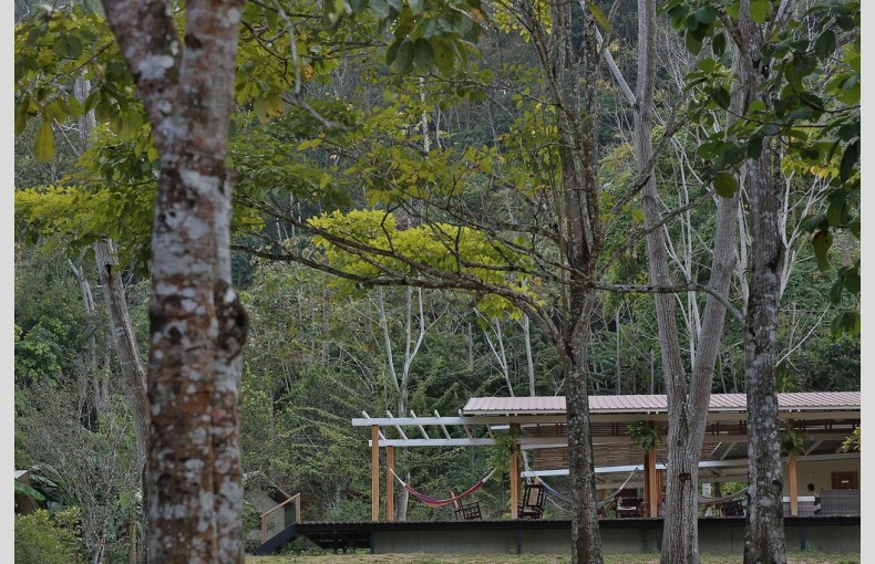 Canopy Camp - Image 16