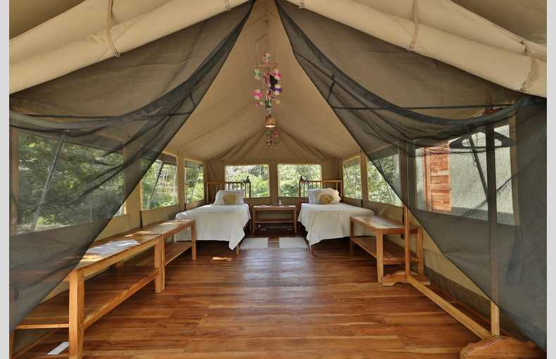 Canopy Camp - Image 2