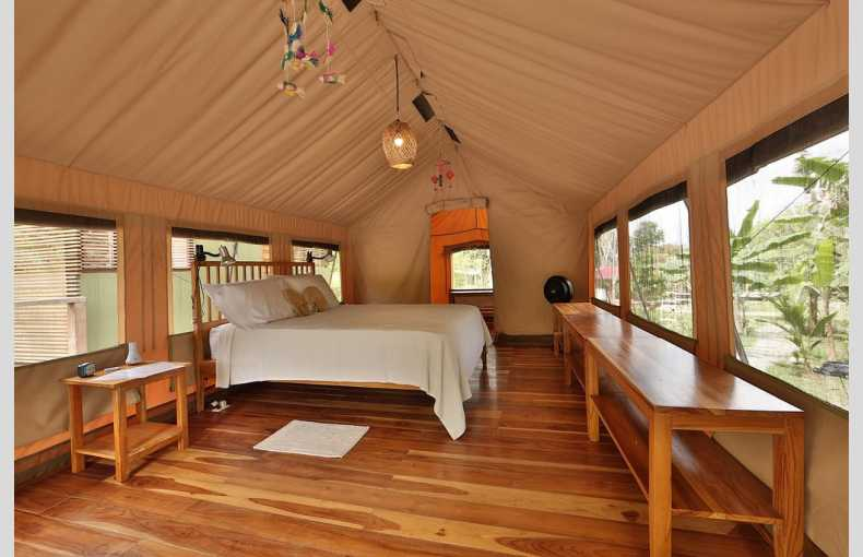 Canopy Camp - Image 4