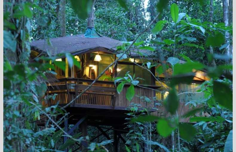 Costa Rica Treehouse - Image 1