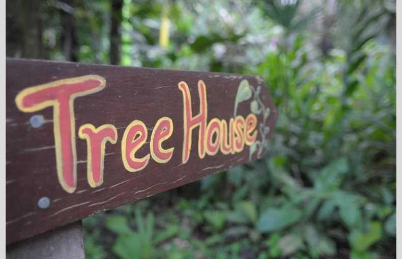 Costa Rica Treehouse - Image 8