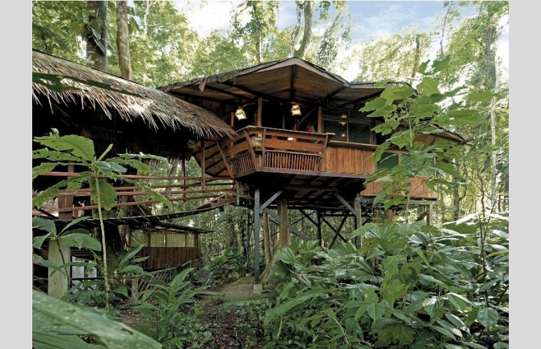 Costa Rica Treehouse - Image 3