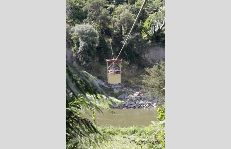 The Flying Fox - Image 18