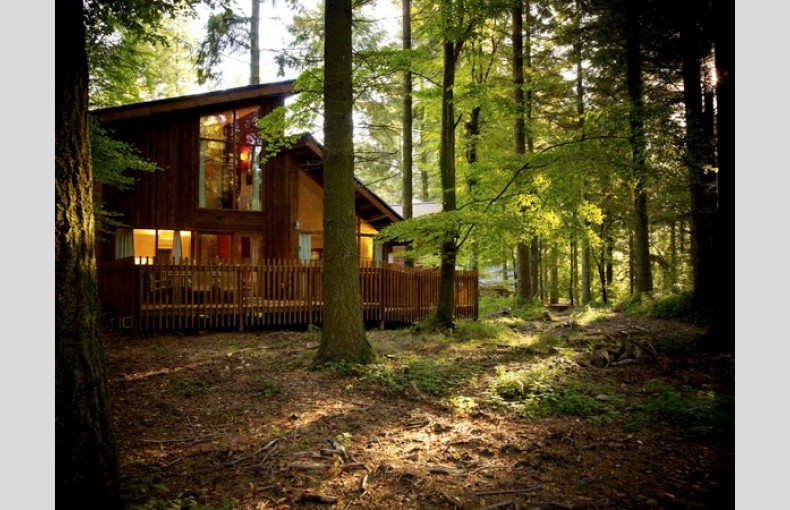 Forest Holidays Woodland Cabins Treehouses Forest Of Dean