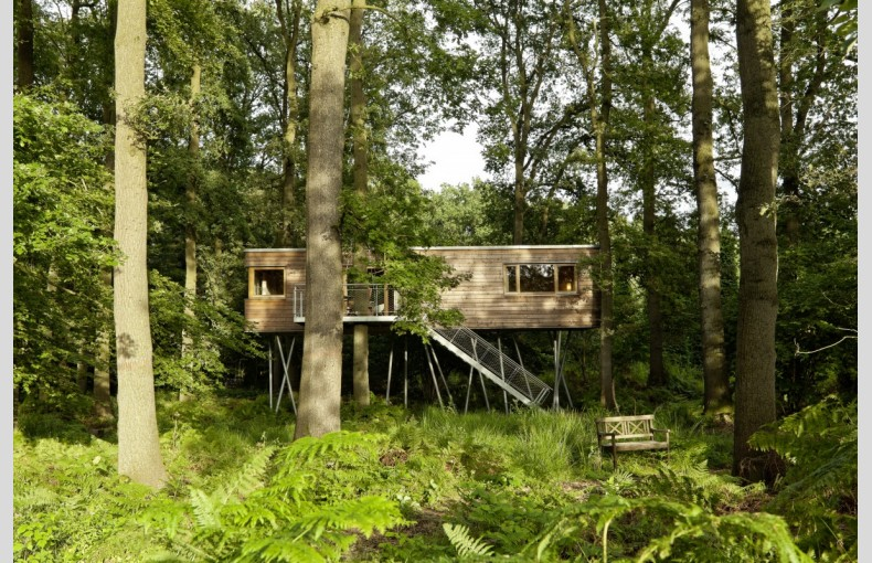 Hidden Treehouse Resort - Image 15