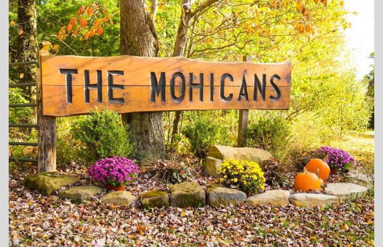The Mohicans - Image 22