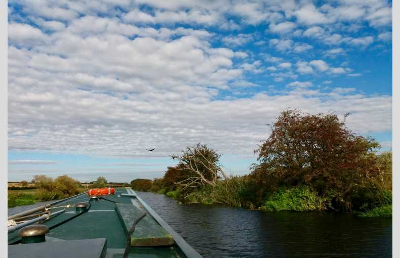 Nene Valley Boats - Image 21