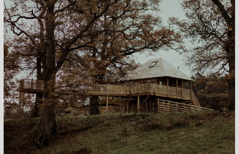 Netherby Treehouse - Image 1