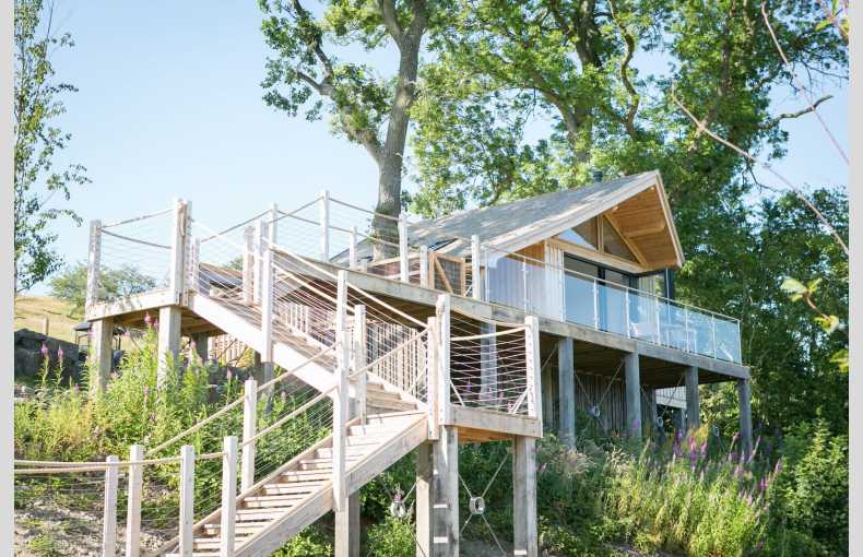 Oaklands Glamping & Treehouse - Image 1