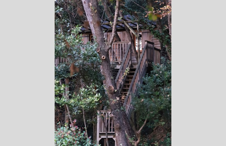 Orion Treehouses - Image 15