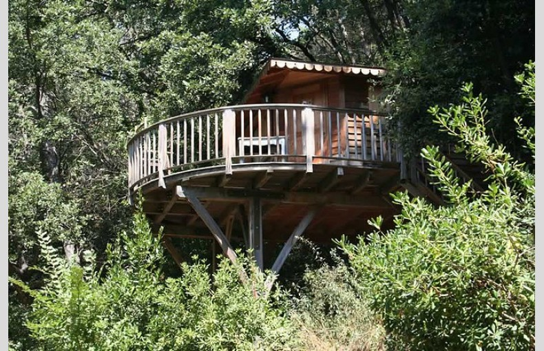 Orion Treehouses - Image 1