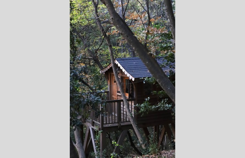 Orion Treehouses - Image 17