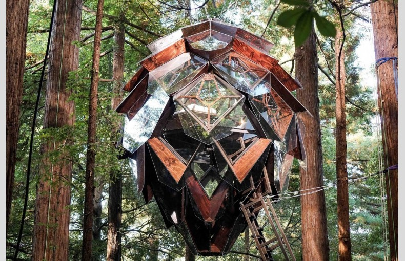 The Pinecone Treehouse - Image 1
