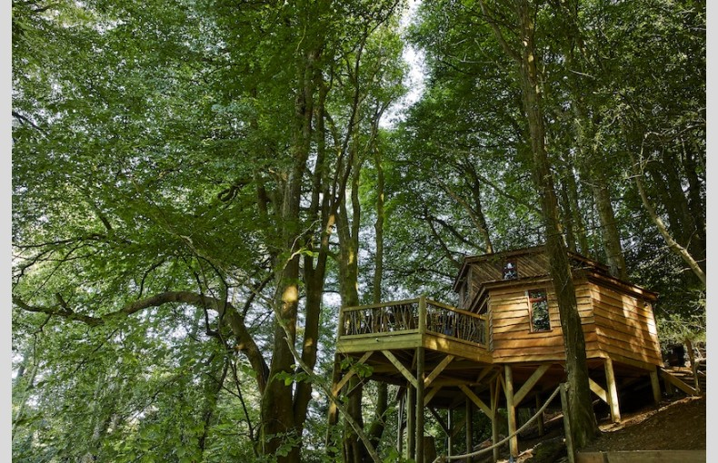 Ravendere Retreats Treehouse - Image 4