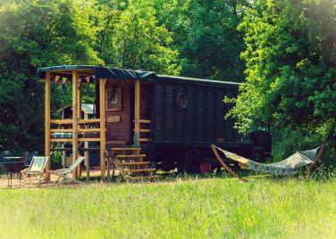 Secret Meadows