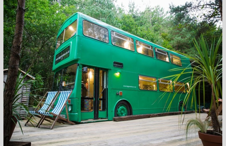 The Big Green Bus - Image 1