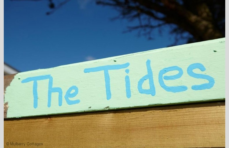The Tides - Image 6