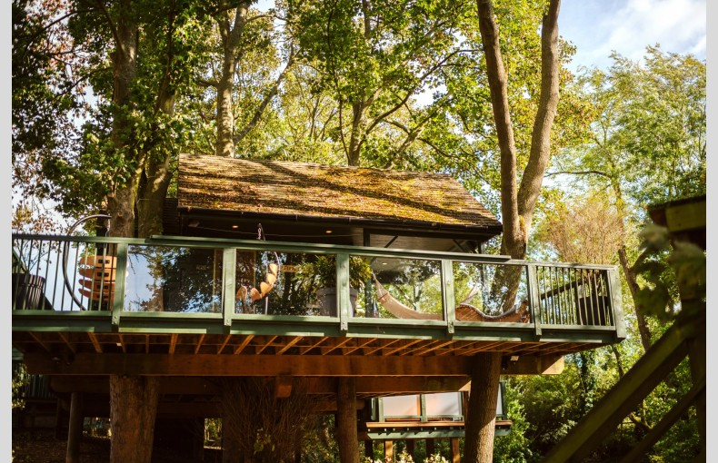 Will's Tree House - Image 23