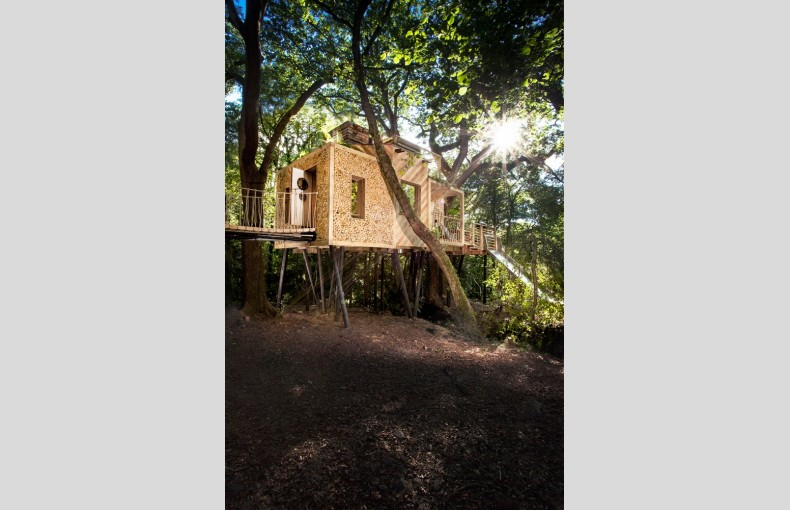 The Woodman's Treehouse - Image 2