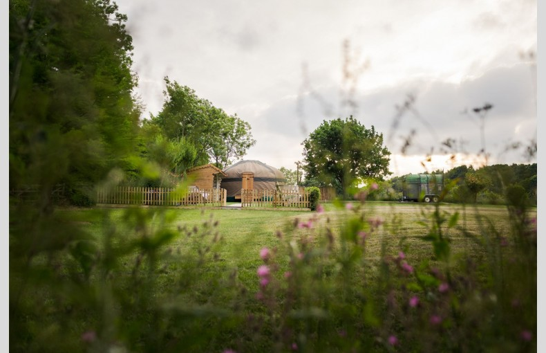 The Yurt at Hollands Farmhouse - Image 2