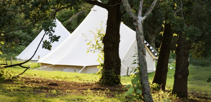 Lloyds Meadow Glamping