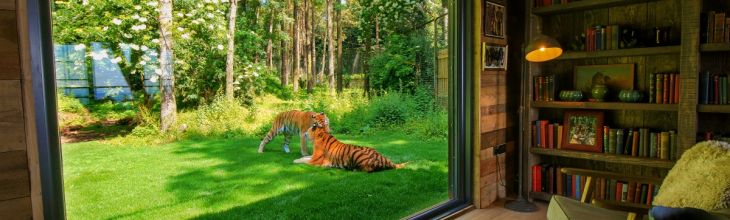 New to Host Unusual: Go wild at Port Lympne with unbelievable safari stays