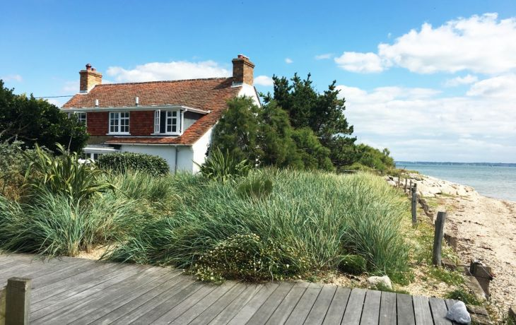 Discover the New Forest in three charming and unique cottages