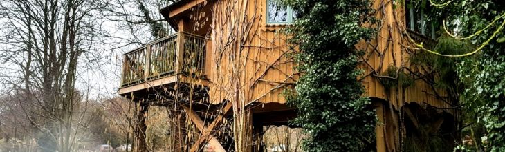 Tried and Tested: Treetop Dreaming in West Lexham's Tilia Treehouse