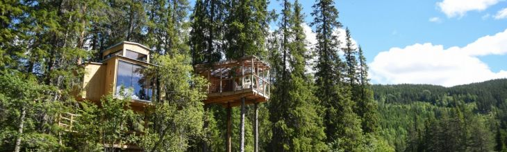 Arboreal Bliss in Five Fantastic New Treehouses