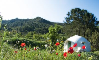 New to Host Unusual: A European Glamping Adventure in Domes, Raft Houses and more...