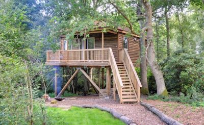 A Treetop Adventure in Sussex with The Passport Diaries