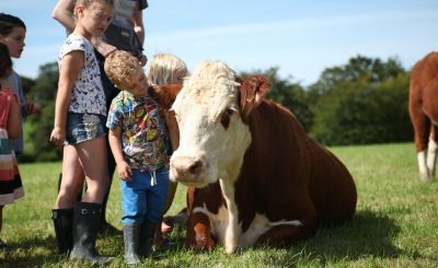 Ten of the Best Family Farm Stays