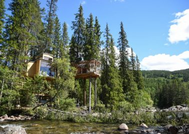 River Eye Treehouse
